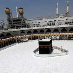مصر تؤكد تضامنها مع المملكة ضد هجمات الحوثي الارهابية