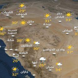 مصر تسجل 181 إصابة جديدة بفيروس كورونا و12 حالة وفاة