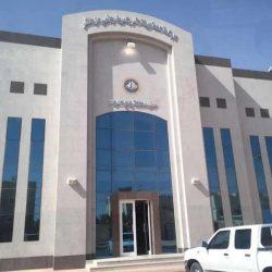 الإمارات تدين محاولة ميليشيا الحوثي استهداف المملكة بـ6 طائرات مفخخة