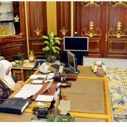 وزير الطاقة: ضم قطاع الكهرباء إلى «الطاقة».. ولجنة التطوير برئاسة ولي العهد