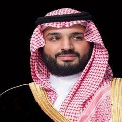 """ادارة """" سينيمانا للفيلم العربي"""" تعلن فتح باب المشاركة بدورته الثانية"""
